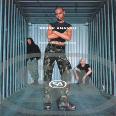 Paranoid and Sunburnt by Skunk Anansie